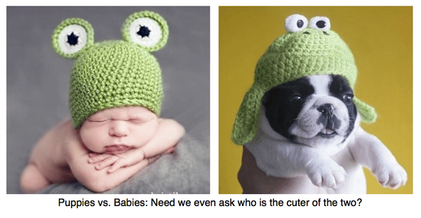 babies or puppies?