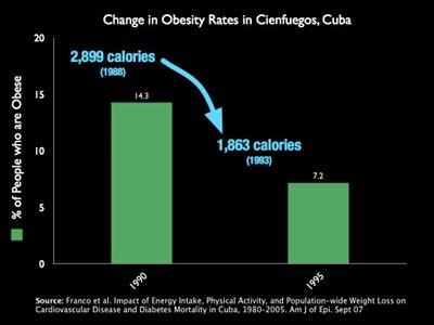 Calorie Trends