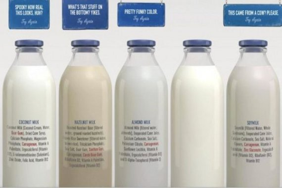 Look Whos Afraid Dairy Industry Launches Ad Campaign Dissing Plant Based Milks
