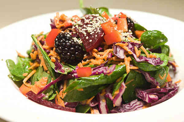 New Survey Reveals Large-Scale Shift to Plant-based Options