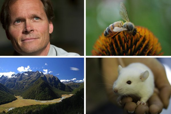 Featured Green Monster: Jonathan Balcombe, Scientist & Author