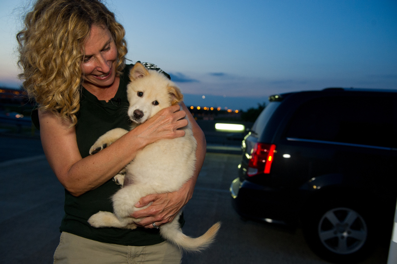 Two Puppies Saved from the Yulin Meat Festival Find New Home with HSI Members (PHOTOS)