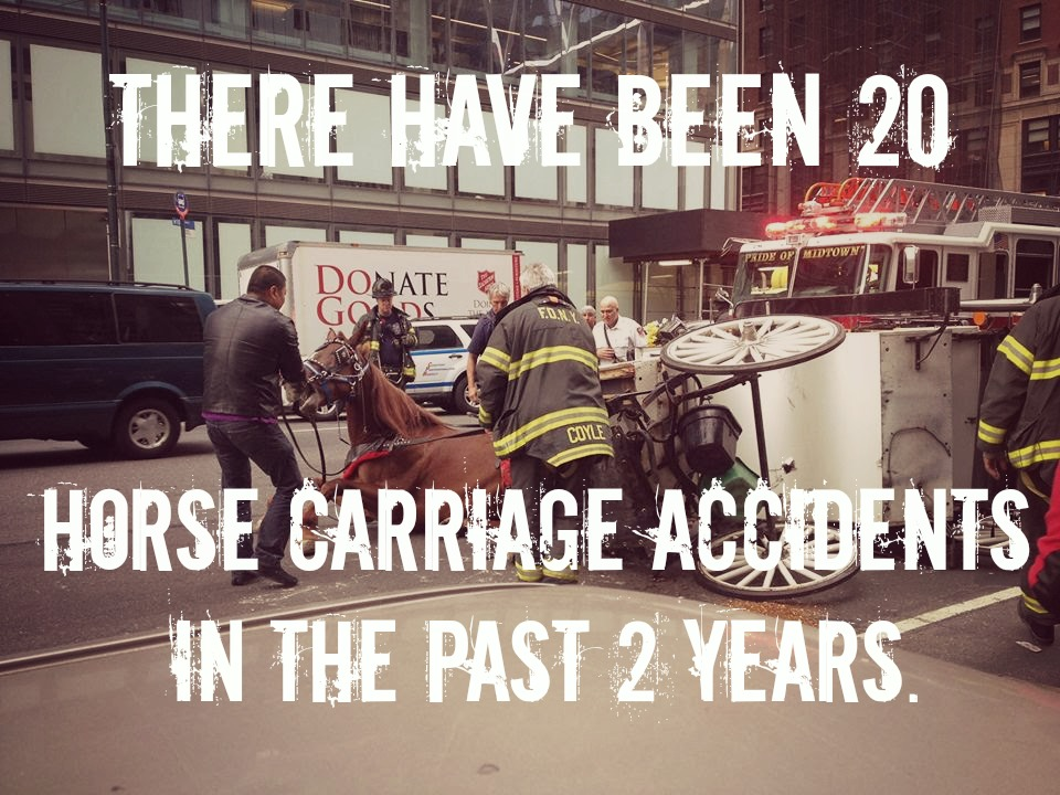 EXPOSED! NYC Carriage Horse
