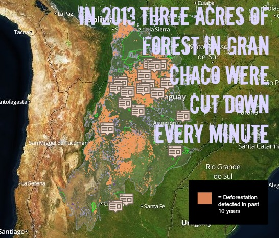 Cargill Cuts Palm Oil Suppliers Who Contribute to Deforestation, but Continues to Cause Deforestation Elsewhere