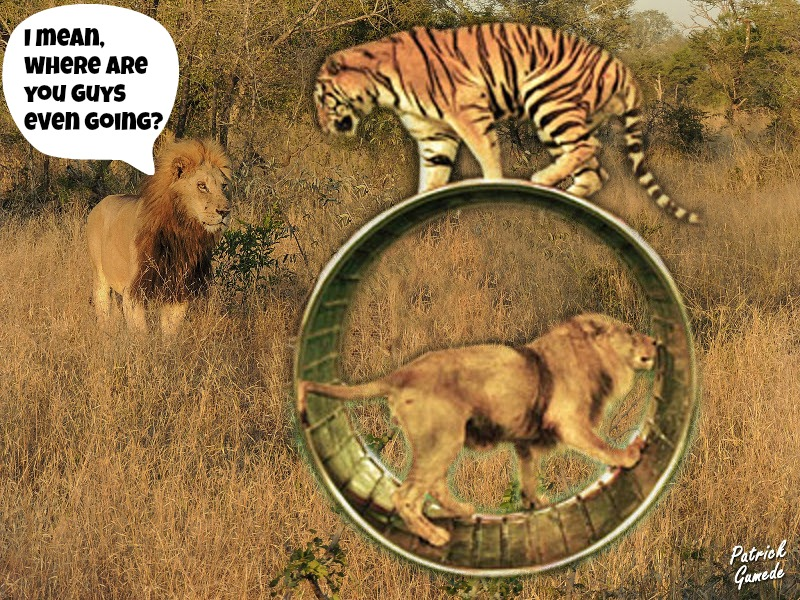 Step Right Up! See How Ridiculous Circus Tricks in the Wild Would Look!