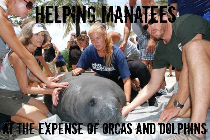 EXPOSED! The Miami Seaquarium: Cruelty Doesn't Help Conservation.