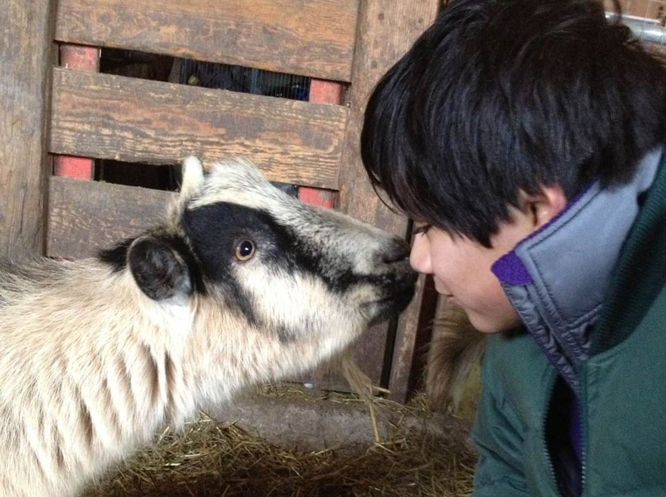 Farm Sanctuary Programs Teach Kids Compassion for All Animals