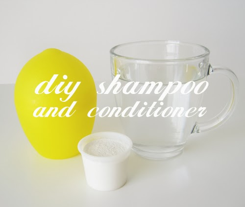DIY Shampoo and Conditioner for Damaged Scalp