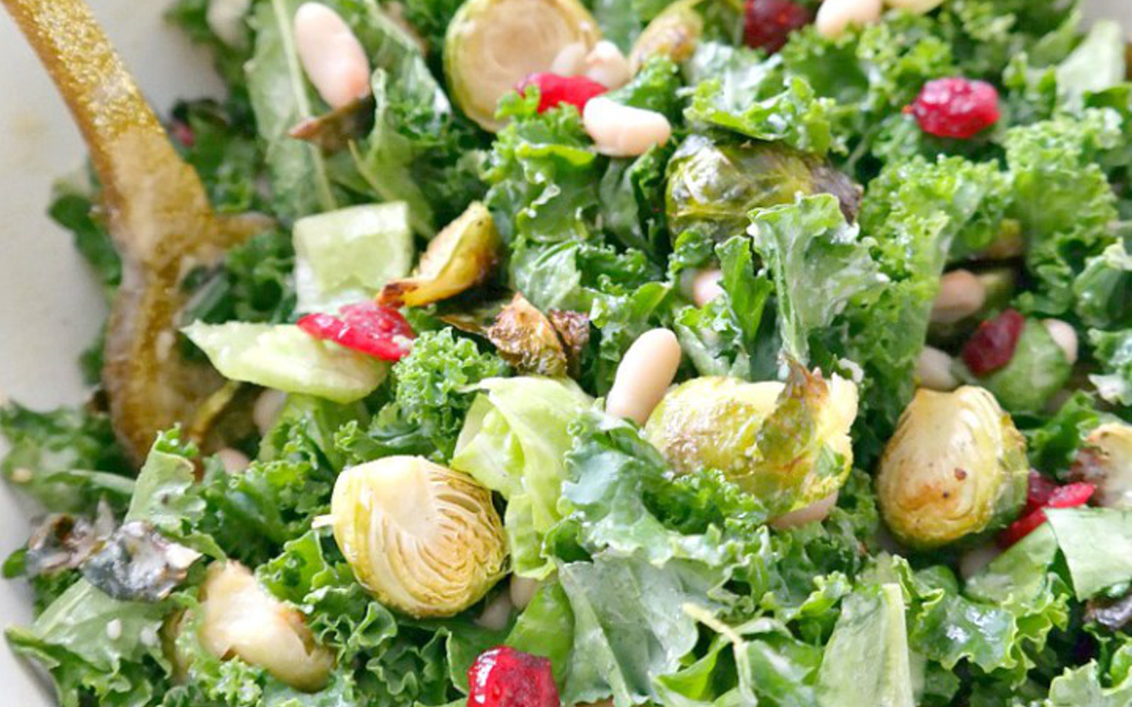 Holiday Kale and Cranberry Salad With Lemon Tahini Dressing