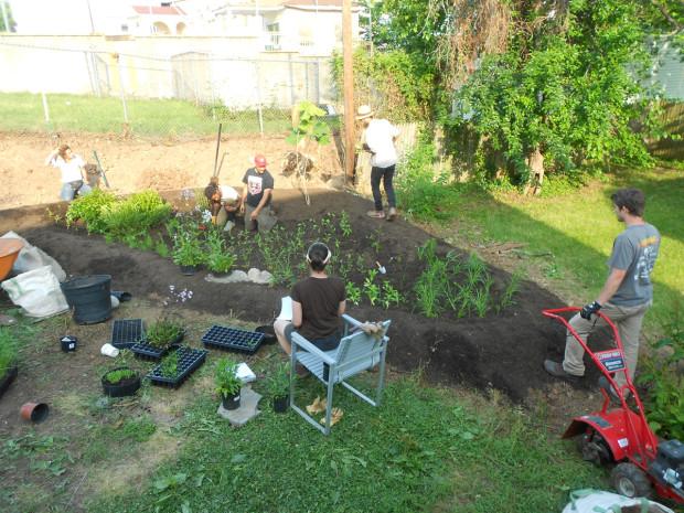 how we u0026 39 re helping turn urban jungles into pollinator