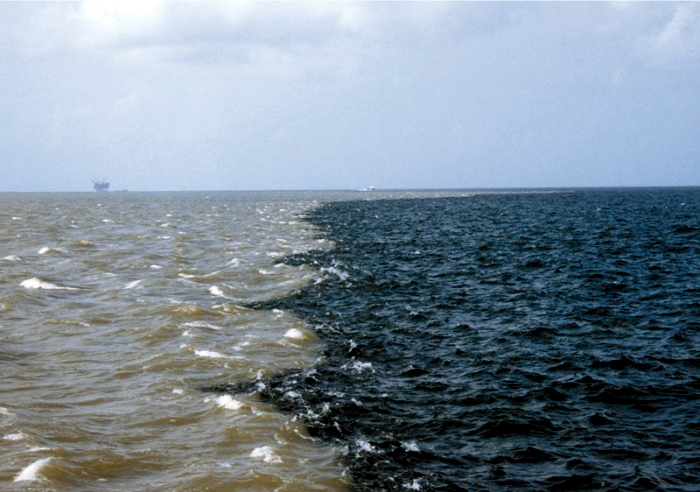 Gulf of Mexico dead zone largest ever, size of New Jersey