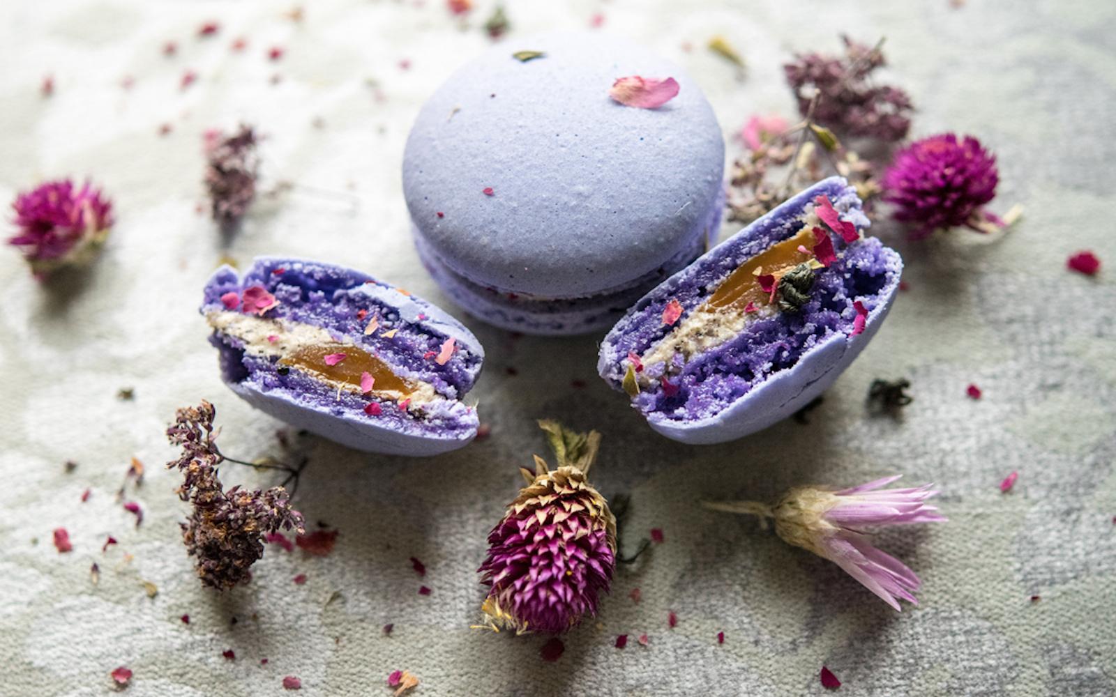 macaron purple cookie