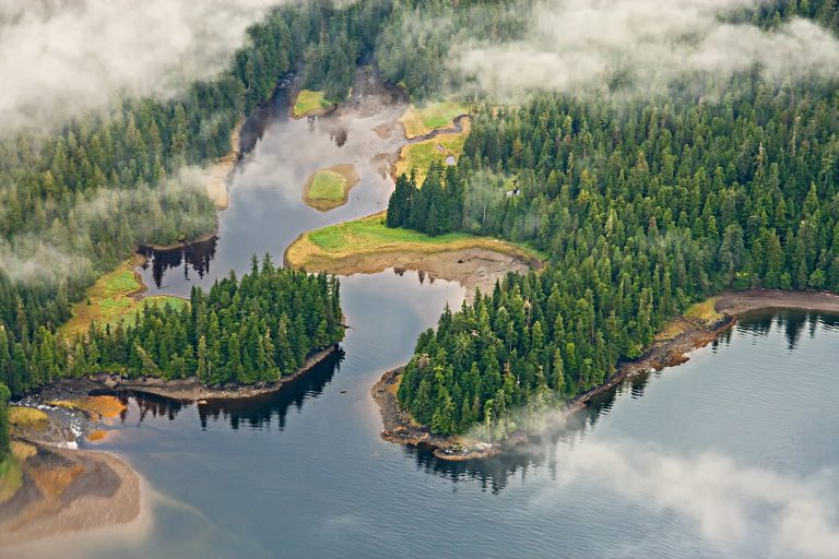 Petition: Tell Congress to Restore Protections for Tongass National Forest