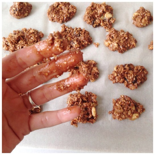 oat meal cookies chocolate