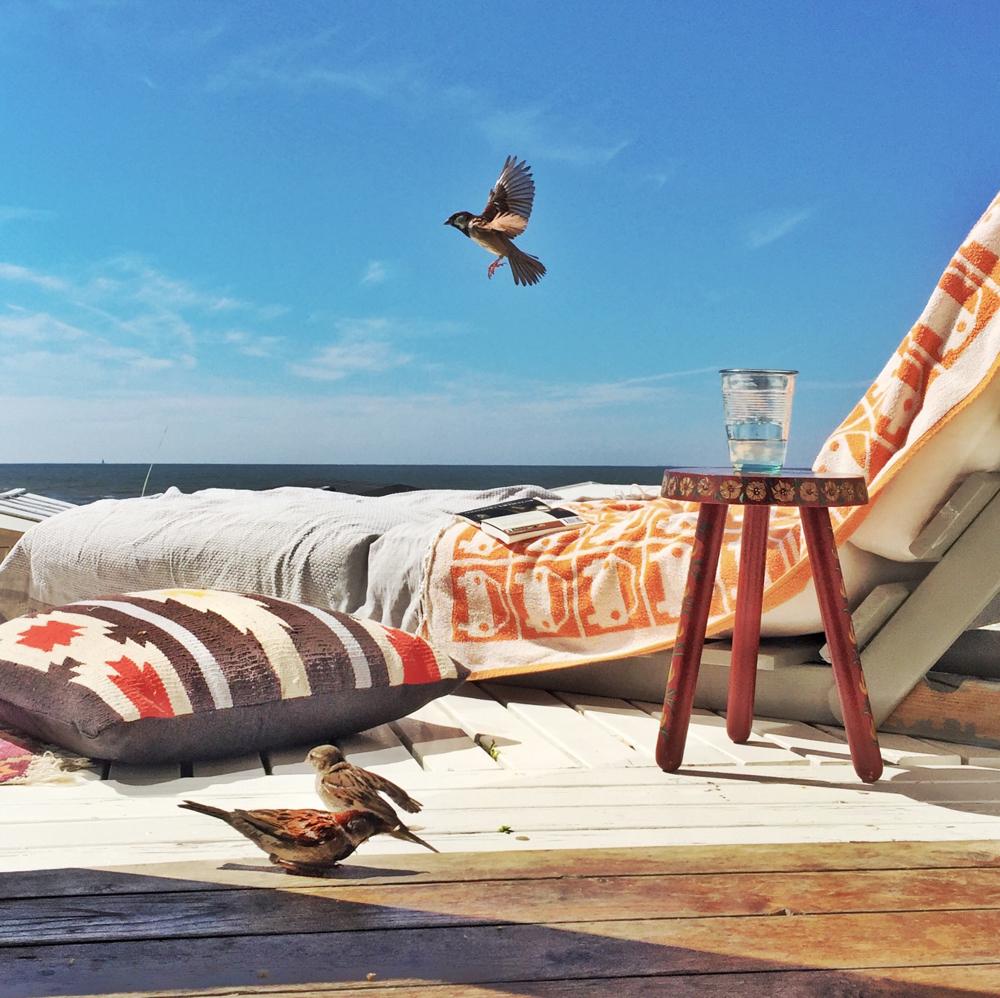 uitzicht strandhuisje