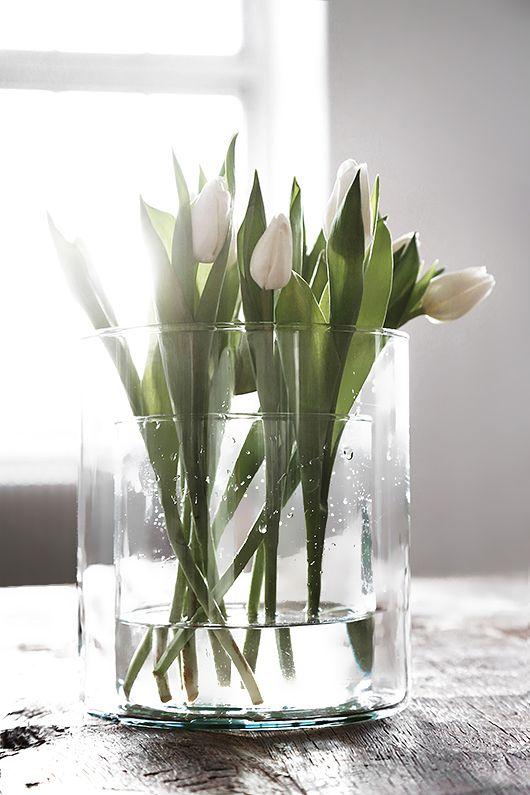 bloemen lang vers