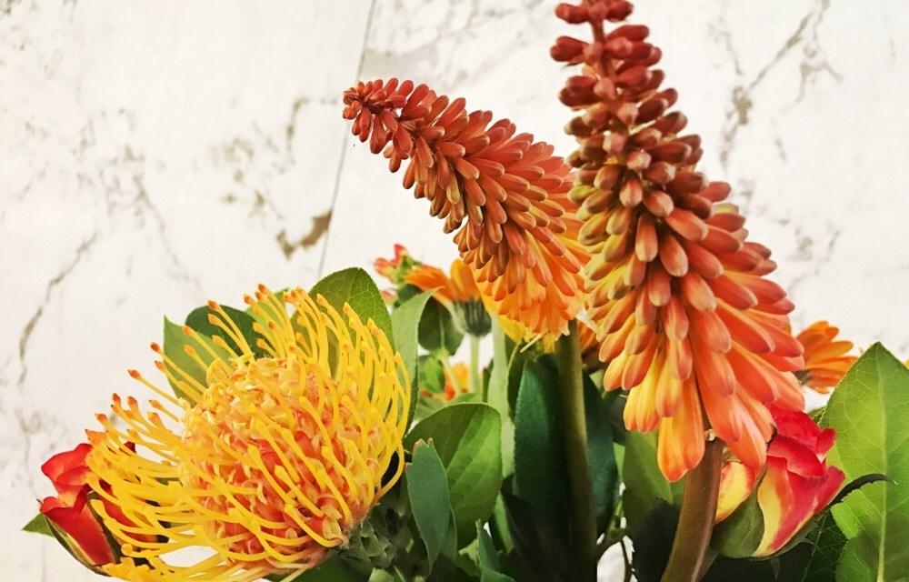 6 tips: zo blijven bloemen lang vers