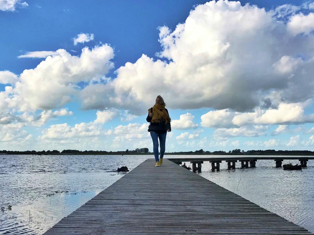 roegwold-wandeling-over-water