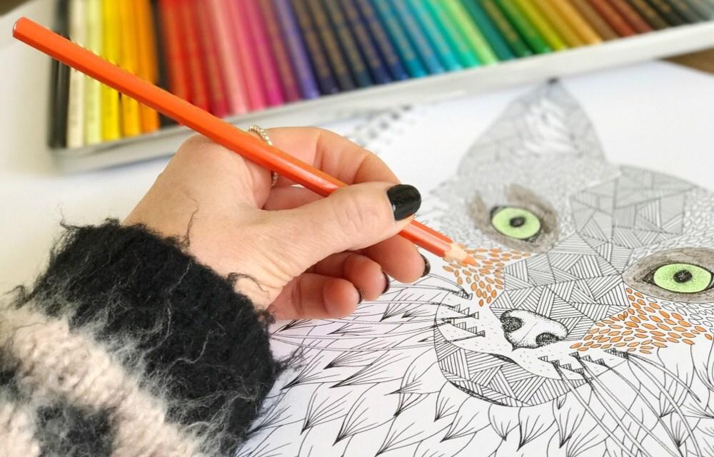 Kan je ontspannen door te kleuren? (+ win 2x Caran d'Ache kleurset t.w.v. 113,- euro)