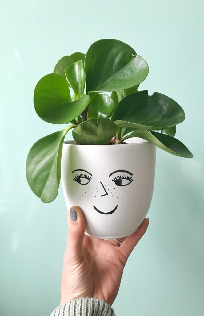 plantenpot met gezichtje