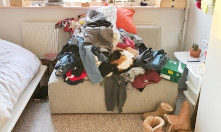 PPVDW: Mam, waar is mijn spijkerbroek?