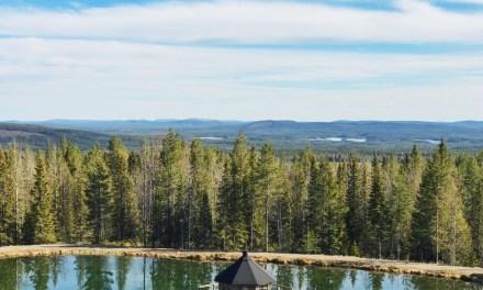 5 reis tips voor Zweeds Lapland (voorjaar/zomer)
