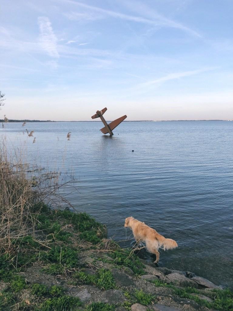 uitzicht Veluwemeer