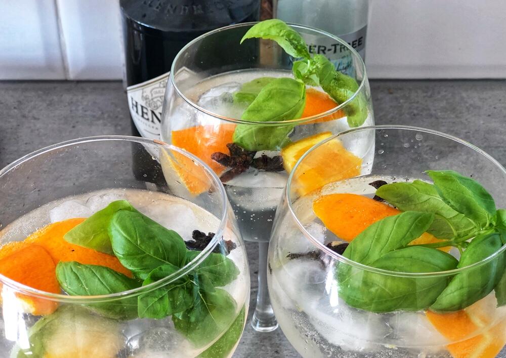 Gin tonic met steranijs