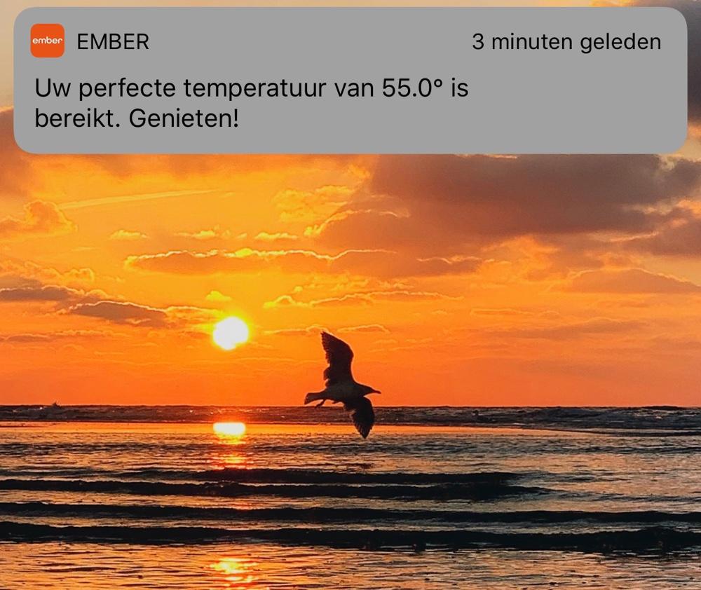 Ember app