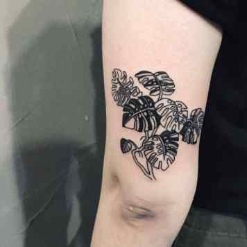 monstera back arm
