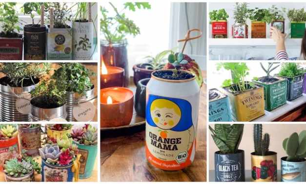DIY | plantenpotje van een blikje