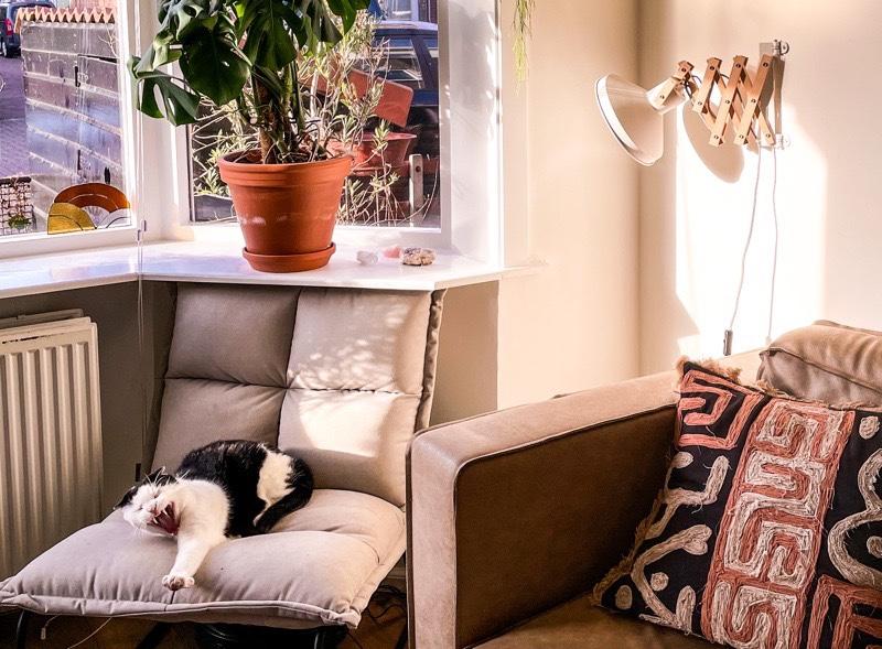 Waarom een schaarlamp niet in je interieur mag ontbreken