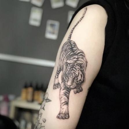 tattoo tijger