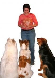 SR_3 dogs