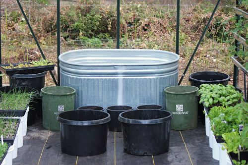 How to Find Free Containers For Your Garden