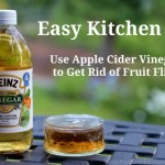 Easy Kitchen Tips – How to Get Rid of Fruit Flies