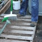 Mavis Garden Blog – Growing Lettuce in a Pallet Garden