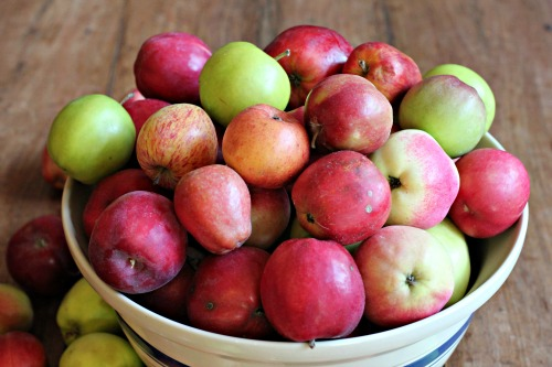 bowl of fresh apples