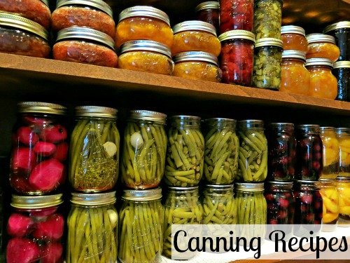 Canning Food Preservation Recipes