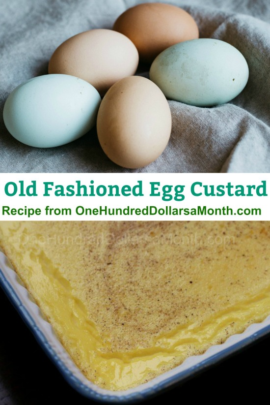 Old Fashioned Egg Custard Recipe One Hundred Dollars A Month