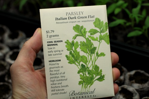 parsley seed packet botanical interests