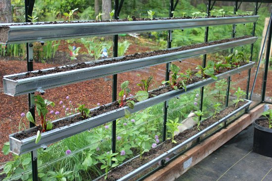 use gutters to grow food