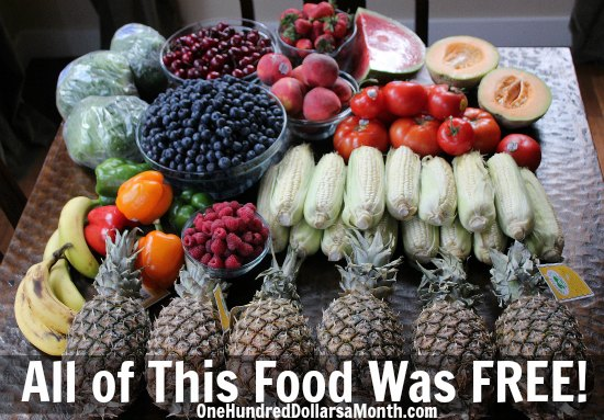 Food waste in America pictures