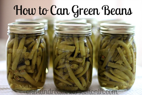 how-to-can-green-beans1