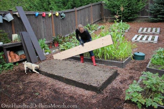 Building New Garden Boxes