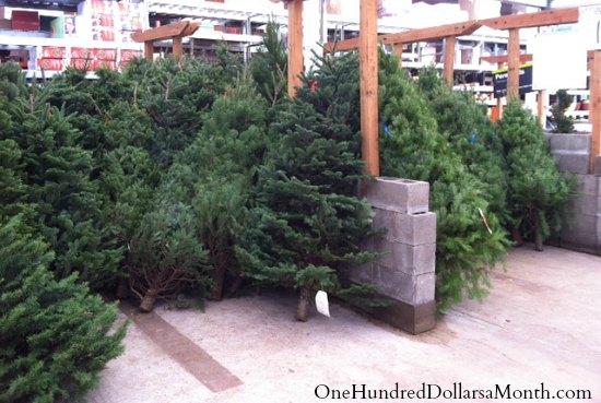 home-depot-christmas-tree