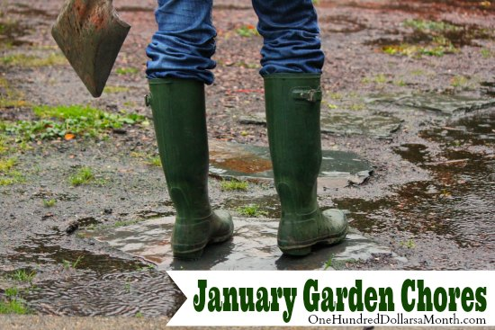 Monthly Garden Chores – January