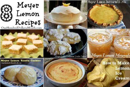 The Best Meyer Lemon Recipes