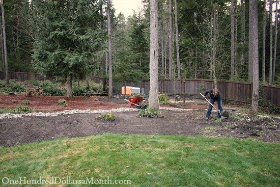 cleaning up backyard garden
