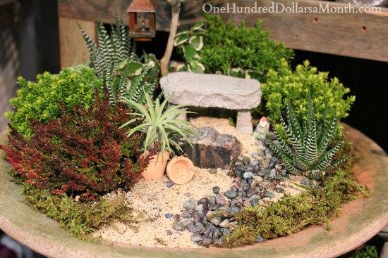 succulent Miniature Garden